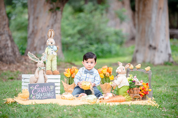 Daniel's Easter mini