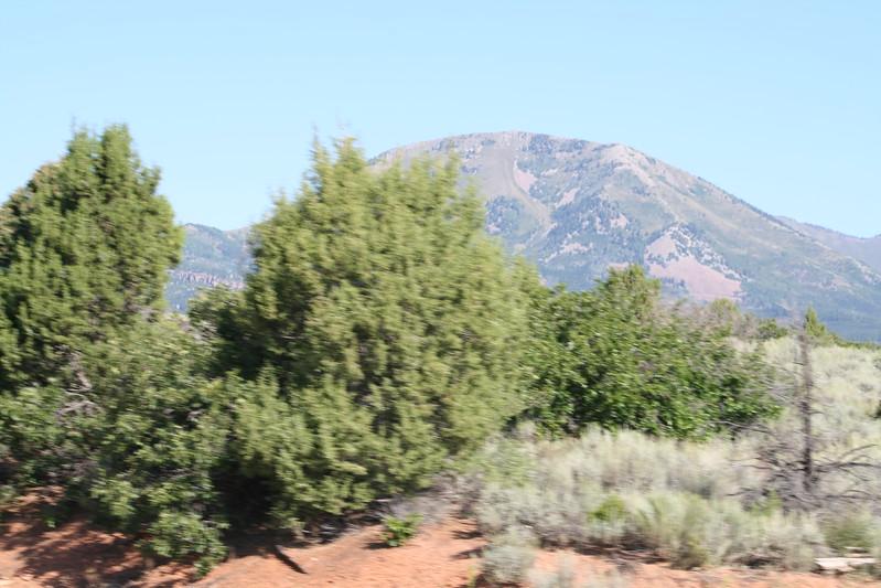 20080908-011 - Mt Linnaeus UT - 02.JPG
