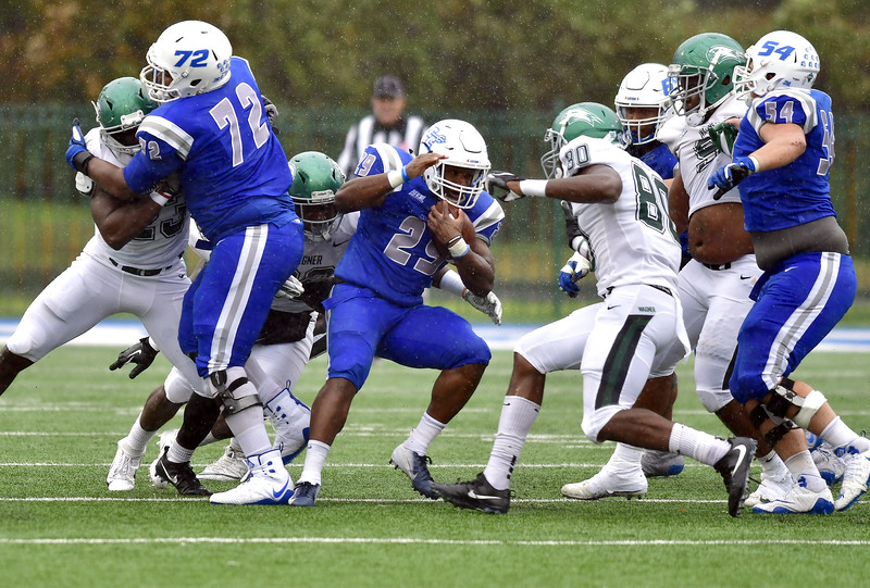 10/27/2018 Mike Orazzi   Staff CCSU's Aaron Dawson (29) during Saturdays' football game in New Britain with Wagner.