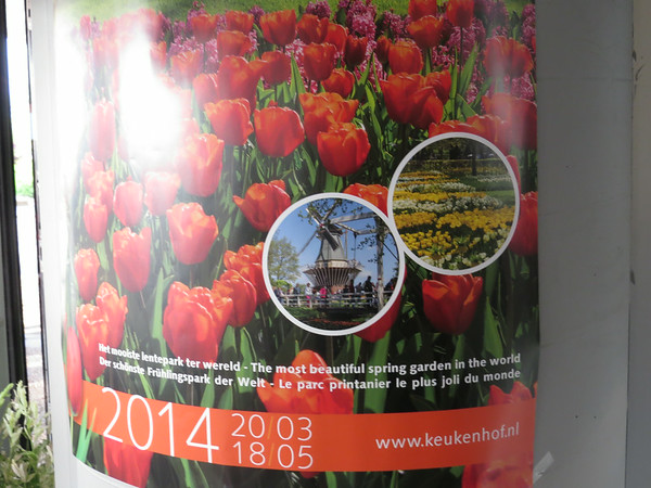 Netherlands Flower Market