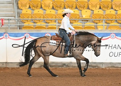 REINING COW HORSE EVENTS