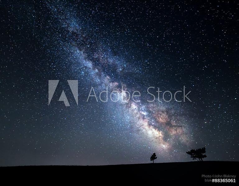 AdobeStock_88365061_WM