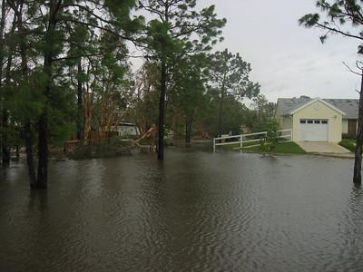 Hurricanes - 2004