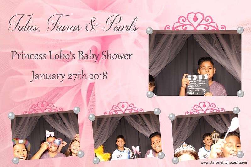 Lobo Baby Shower_14.jpg