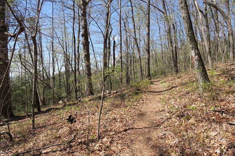 Ridge Trail - 2,960'