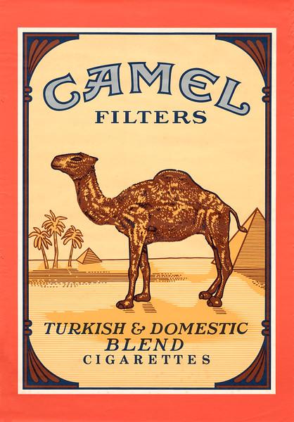 Camel Filters (reduced).jpg