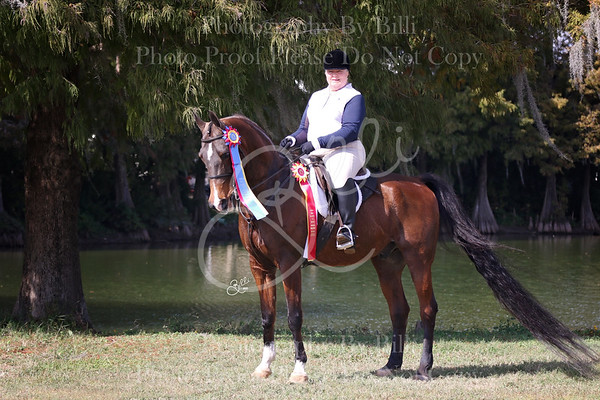 Ocala Equestrian Center