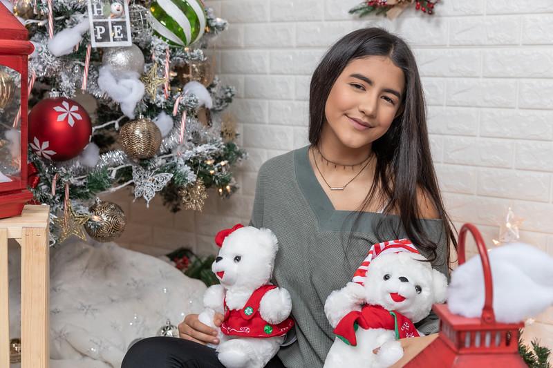 12.18.19 - Vanessa's Christmas Photo Session 2019 - 41.jpg