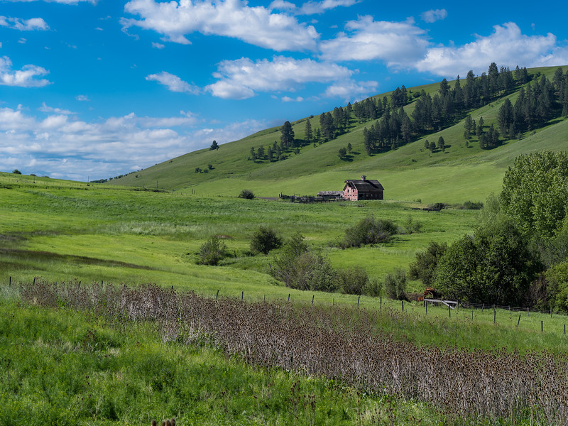 Dorrance barn (Wallowa Wanderlust workshop)