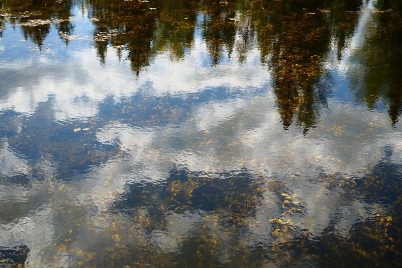 20180831_011_24_Reflective Lake.jpg