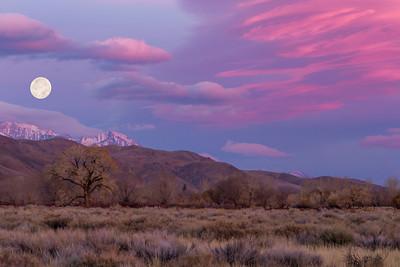 Eastern Sierra - Bishop/Lone Pine
