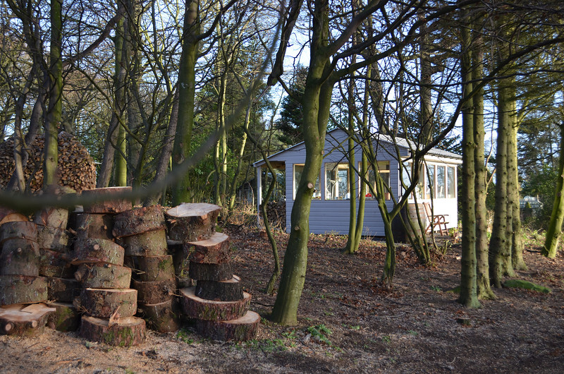Stockpiling logs before splitting to build another Holz Hausen