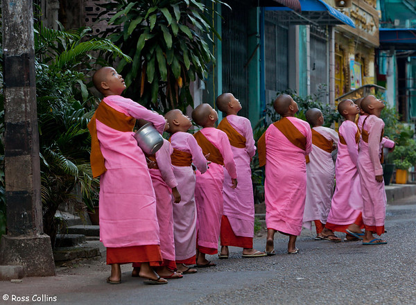 Streets of Yangon, 2013