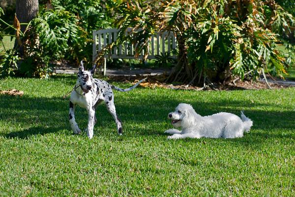 Finn & Liz 1-28-12