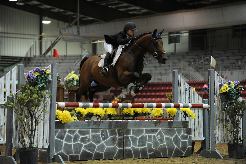 Horse show (42).jpg