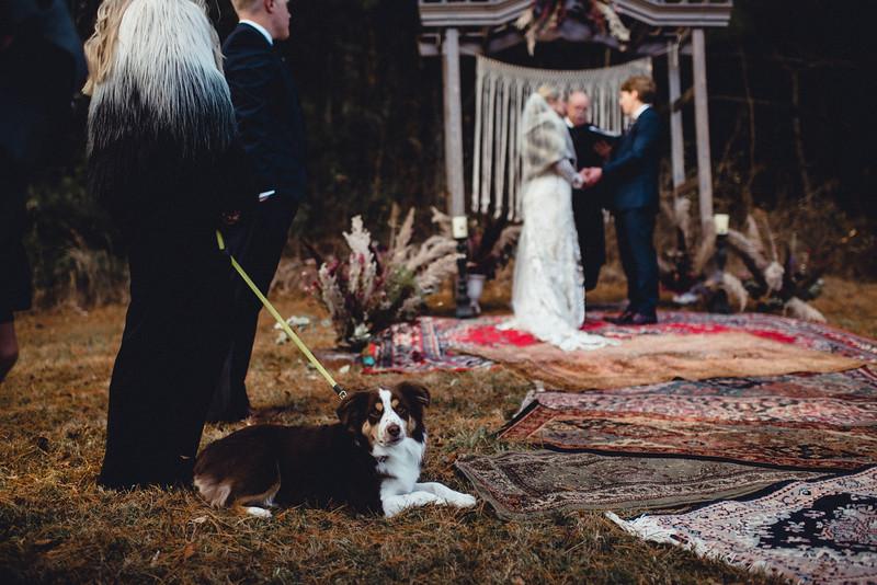 Requiem Images - Luxury Boho Winter Mountain Intimate Wedding - Seven Springs - Laurel Highlands - Blake Holly -989.jpg