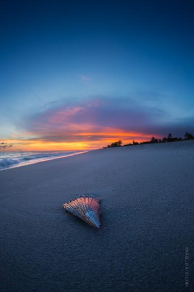 Sanibel Sunset on the sea sore