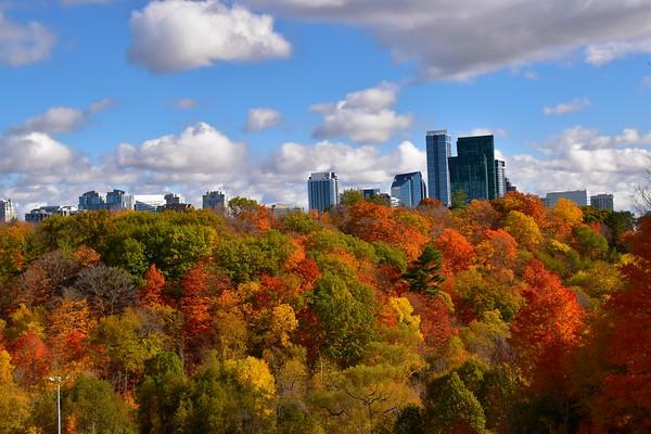 Earle Bales Park, Toronto (October 2020)