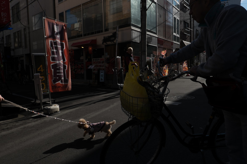 2019-12-21 Japan-446.jpg