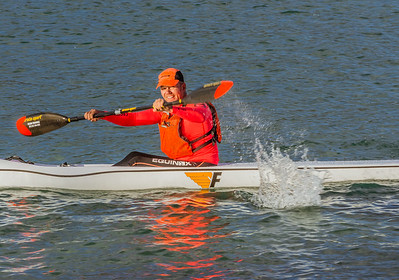 SeaDog Paddle Series