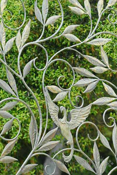 Mythical Bird in the Garden ~ This interesting metal work was a small part of a decorative fence by the Boddy House at Descanso Gardens in La Canada-Flintridge, California.