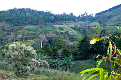 Eco-Alberge La Fundadora, Jinotega