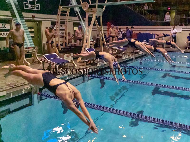Swimming-diving vs Seton Hall_978.jpg