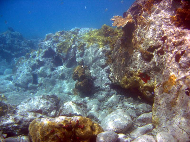 Saint Barth - Underwater Colombier