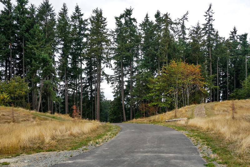 Pratt_Sawyer Trail_Dog Park006.jpg