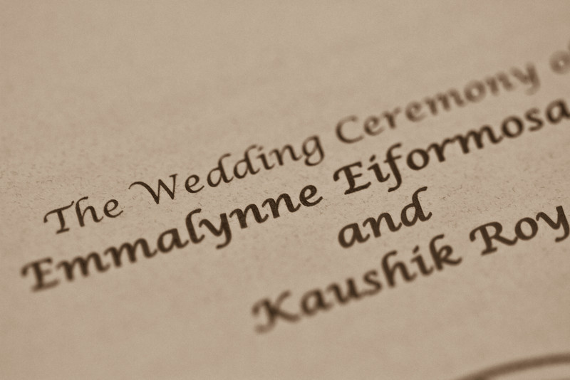 Emmalynne_Kaushik_Wedding-500.jpg