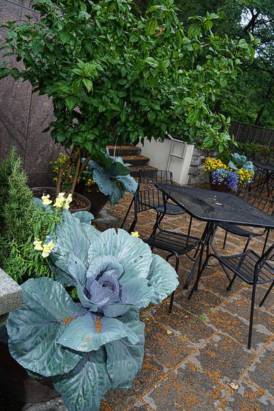Arboretum, July Harvest-10.JPG
