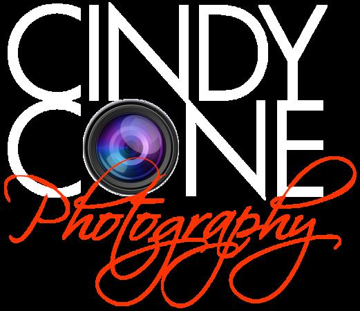 logo_lens-WHITE-newRED.png