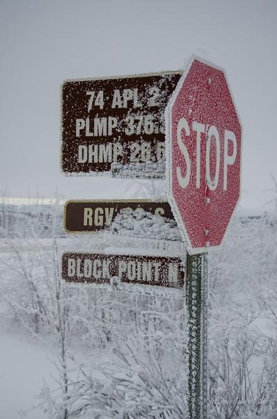 USA-Alaska-Arctic-Circle-2503.jpg