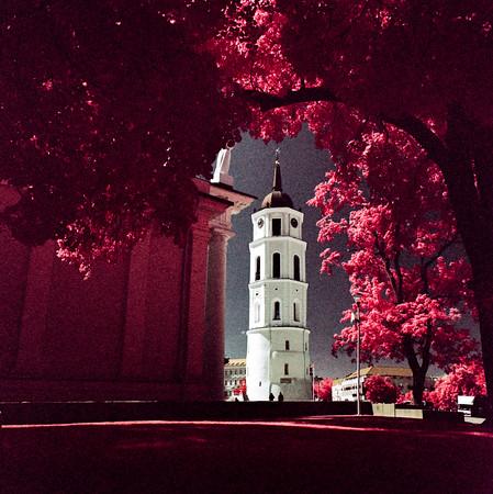 Vilnius in Pink