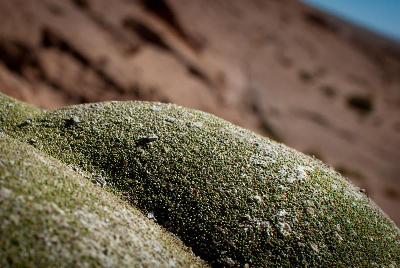 Tupiza to Uyuni 20120530 (127).jpg