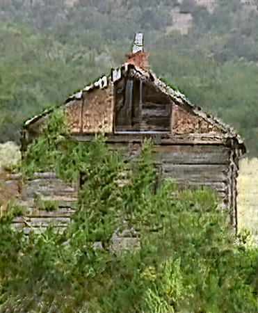 New Mexico in 1998