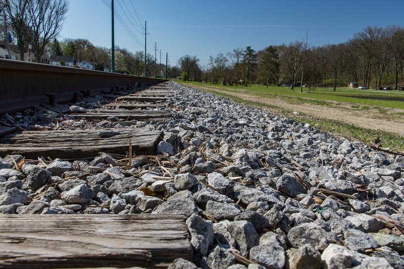 Killdeer-eggs-nest-railroad-tracks6-Canton.jpg
