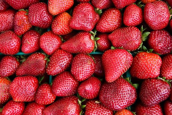 Berry Fest 2012