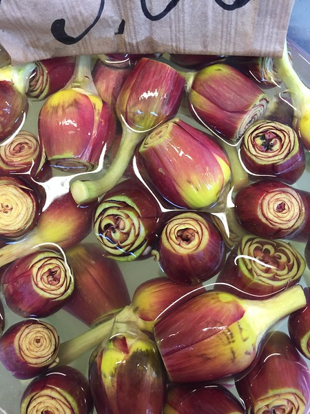 venice artichokes 3.jpg