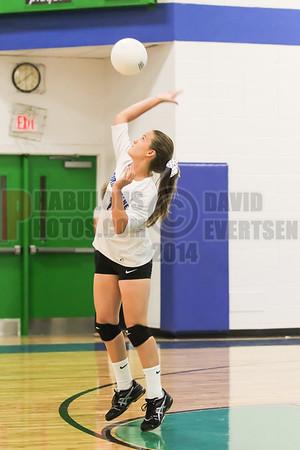 Girls JV Volleyball #1 - 2014