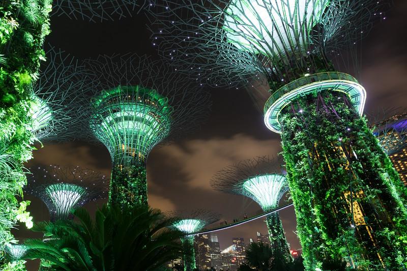 1802_singapore_054.jpg