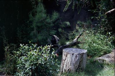 007 - Zoo