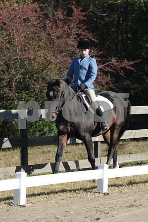 North Wind Horse Farm - 10-10-10