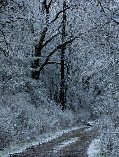 Placer County Drives - Winter 2019