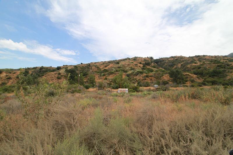 32633-Trabuco-Canyon-Rd-Mitchell-East-Trabuco-Canyon_64.JPG