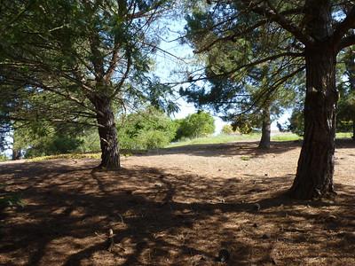Harvey Bear County Park 2012-04-08