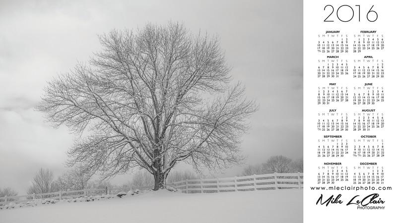 2016 Screen Calender Winter Tree.jpg