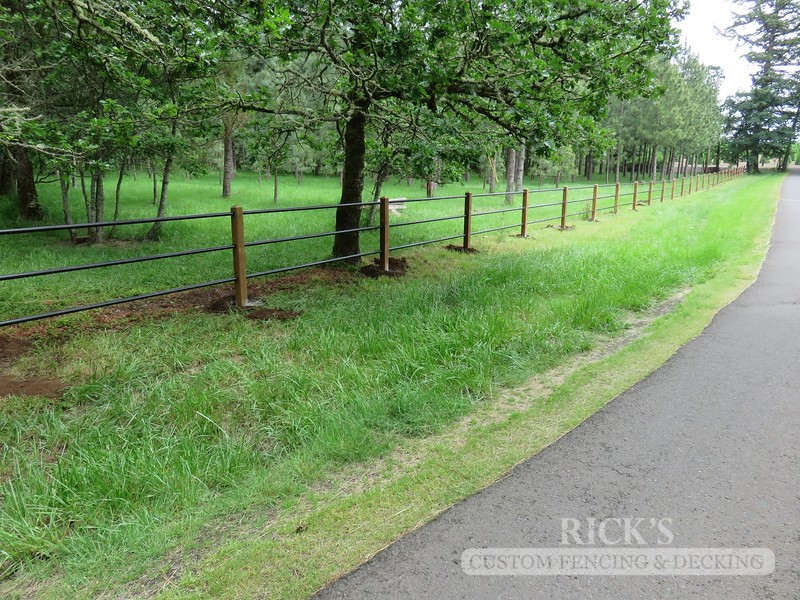 4304 - Pipe Rail Fencing