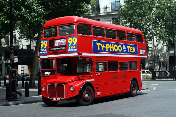 Alpha Bus