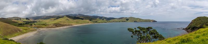 Blick auf die Bucht von Port Jackson vom «Muriwai Hilltop Track»